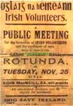 irish volunteers